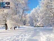 行摄北国 轻装上阵尽情享受浪漫冬季